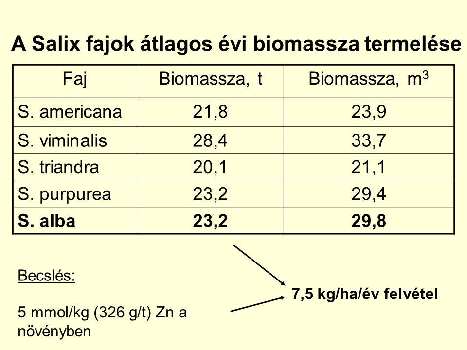 A Salix fajok átlagos évi biomassza termelése