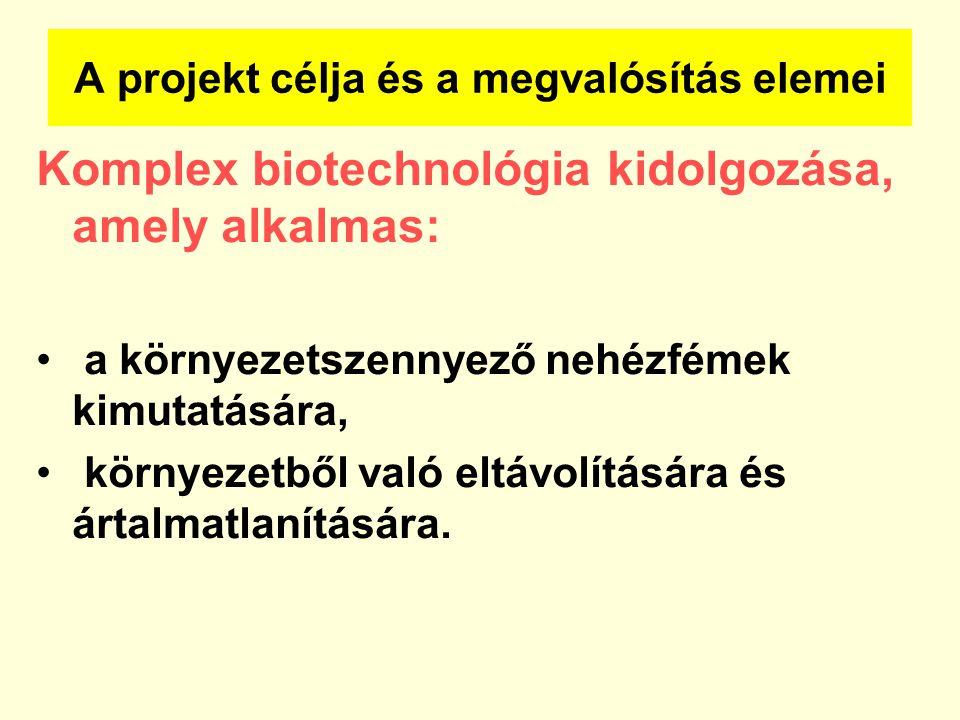 A projekt célja és a megvalósítás elemei