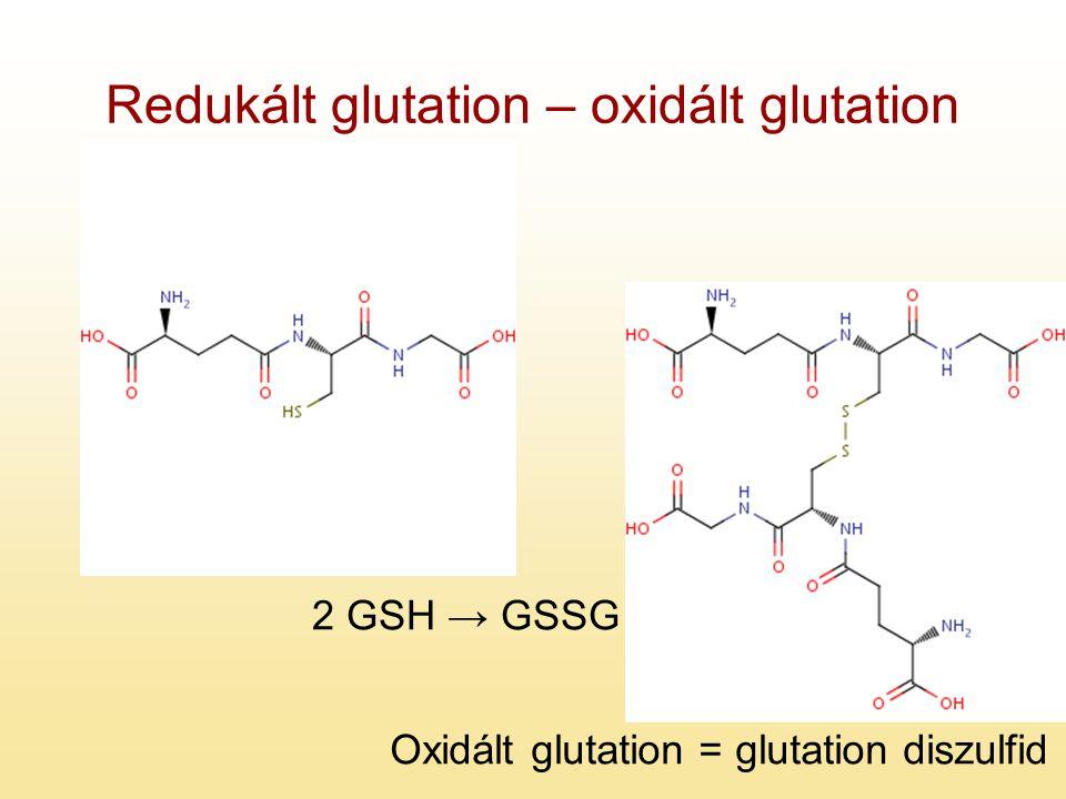 Redukált glutation – oxidált glutation