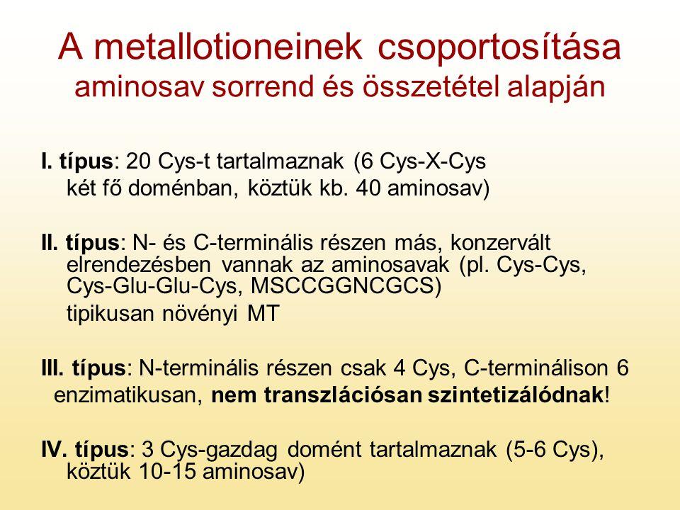 A metallotioneinek csoportosítása aminosav sorrend és összetétel alapján