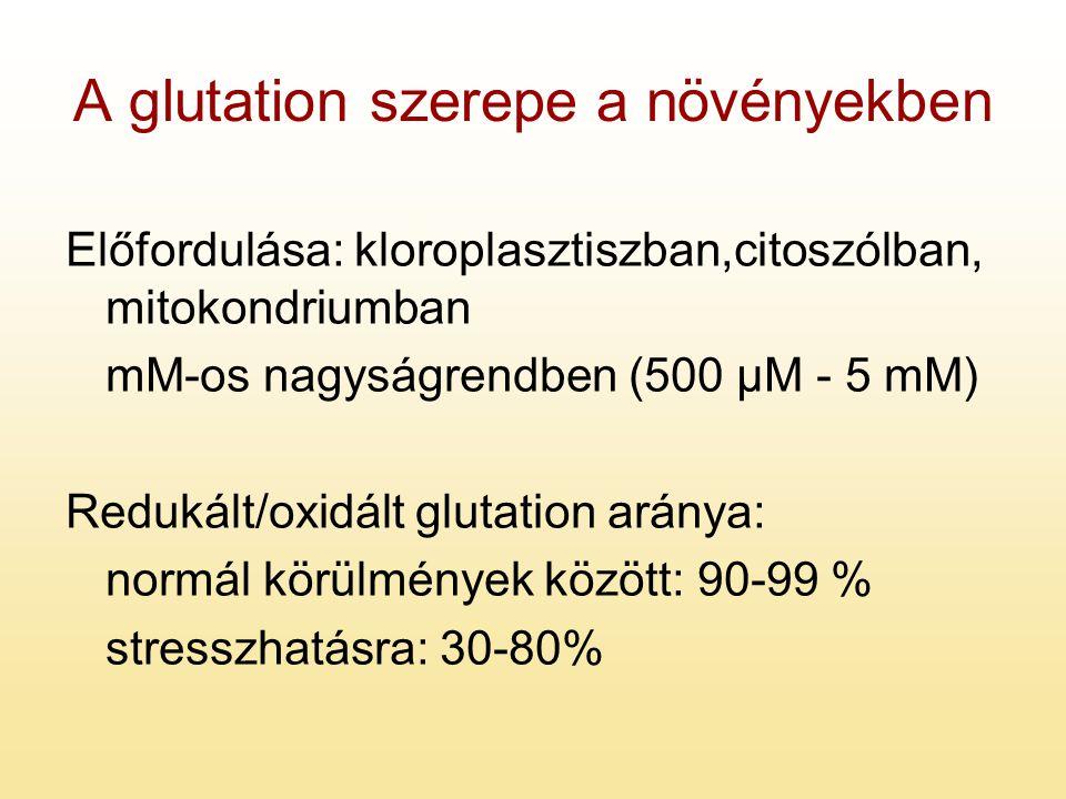 A glutation szerepe a növényekben