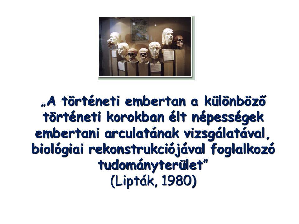 """""""A történeti embertan a különböző történeti korokban élt népességek embertani arculatának vizsgálatával, biológiai rekonstrukciójával foglalkozó tudományterület (Lipták, 1980)"""