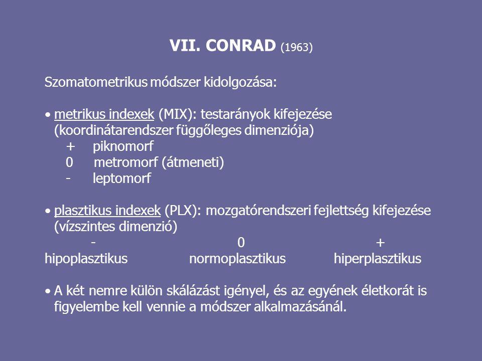 VII. CONRAD (1963) Szomatometrikus módszer kidolgozása: