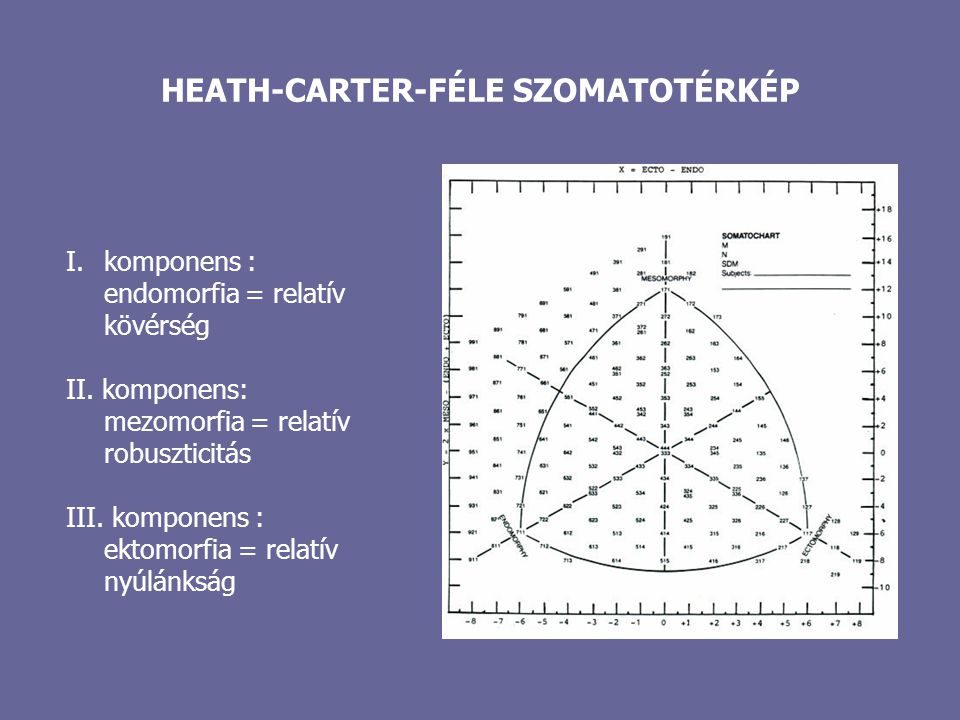 HEATH-CARTER-FÉLE SZOMATOTÉRKÉP