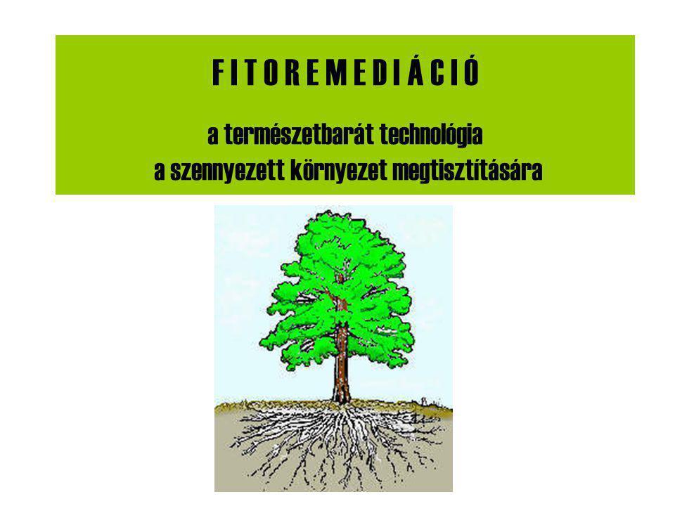 F I T O R E M E D I Á C I Ó a természetbarát technológia a szennyezett környezet megtisztítására