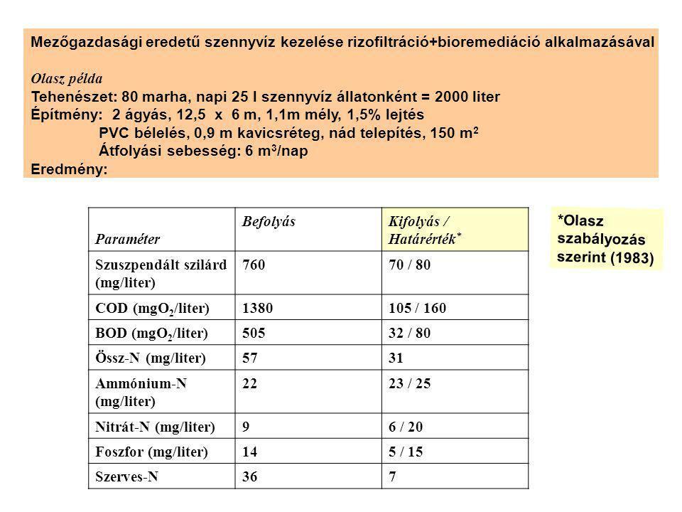 Mezőgazdasági eredetű szennyvíz kezelése rizofiltráció+bioremediáció alkalmazásával