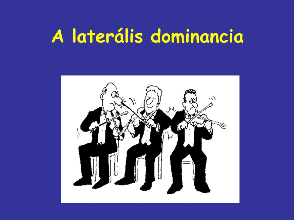A laterális dominancia
