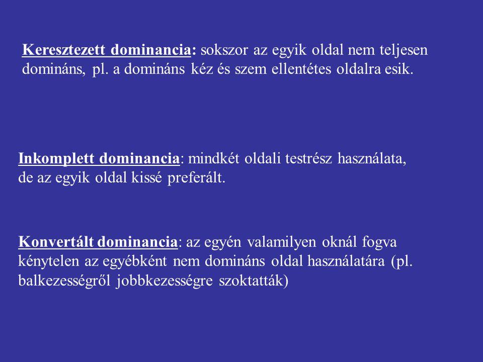 Keresztezett dominancia: sokszor az egyik oldal nem teljesen domináns, pl. a domináns kéz és szem ellentétes oldalra esik.
