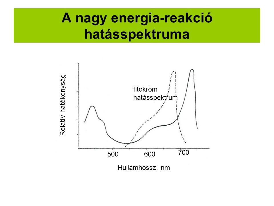 A nagy energia-reakció hatásspektruma