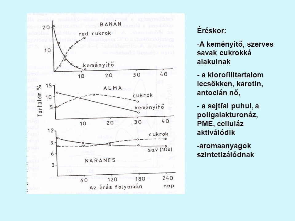 Éréskor: A keményítő, szerves savak cukrokká alakulnak. - a klorofilltartalom lecsökken, karotin, antocián nő,