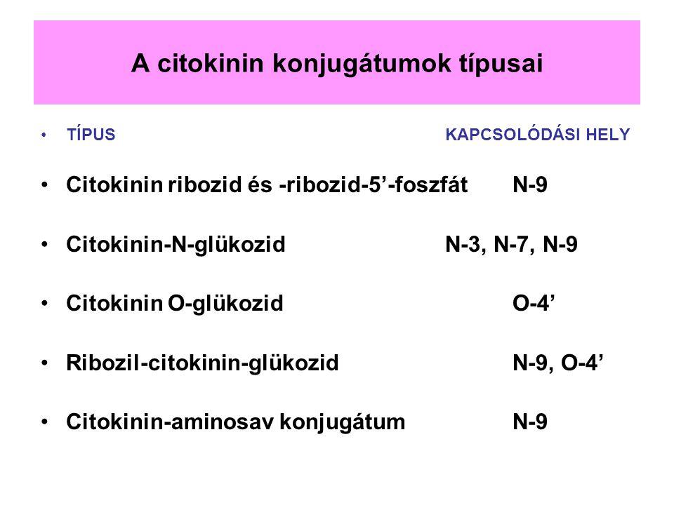 A citokinin konjugátumok típusai