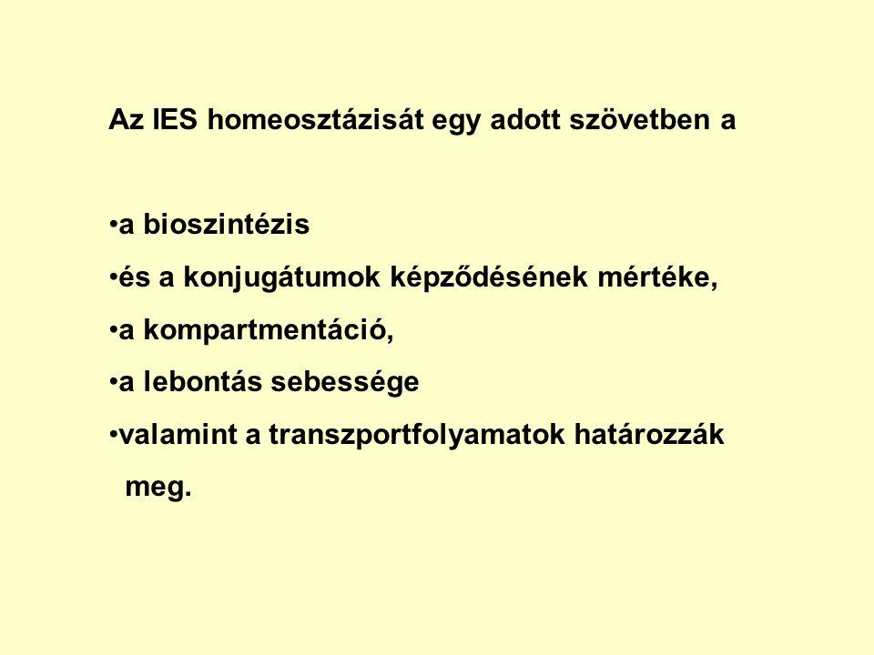 Az IES homeosztázisát egy adott szövetben a