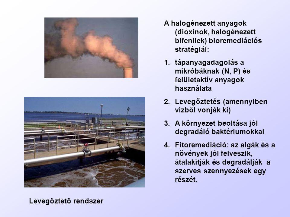 A halogénezett anyagok (dioxinok, halogénezett bifenilek) bioremediációs stratégiái: