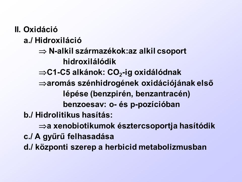 II. Oxidáció a./ Hidroxiláció.  N-alkil származékok:az alkil csoport. hidroxilálódik. C1-C5 alkánok: CO2-ig oxidálódnak.