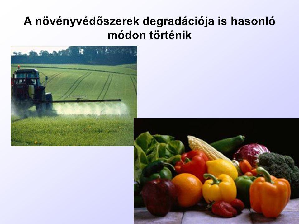 A növényvédőszerek degradációja is hasonló módon történik