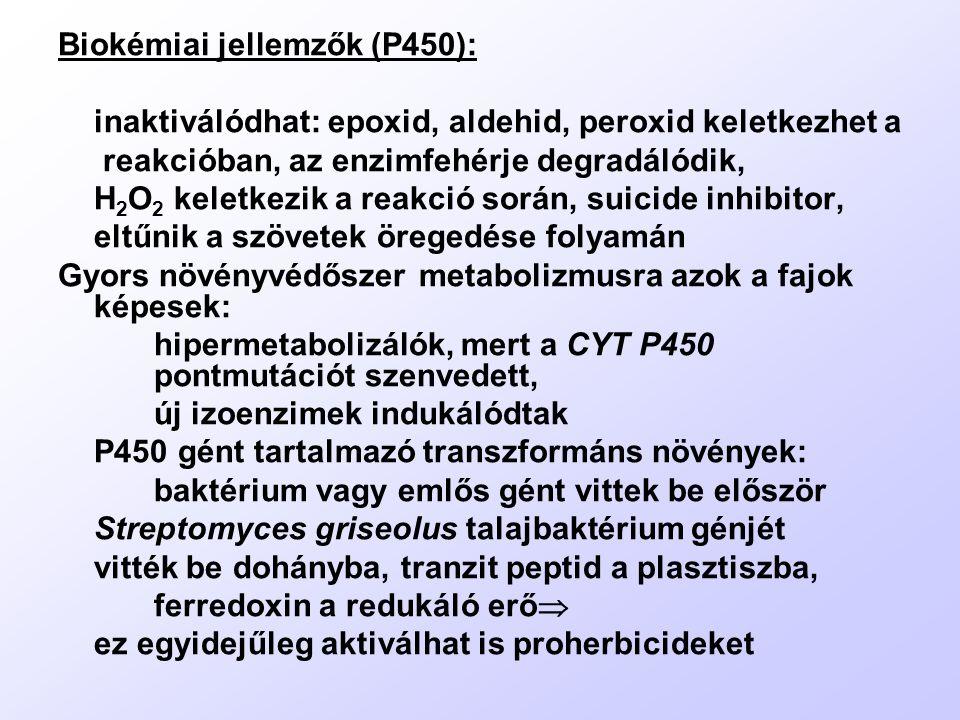 Biokémiai jellemzők (P450):