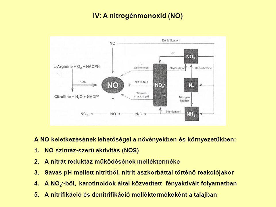 IV: A nitrogénmonoxid (NO)