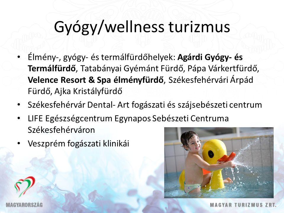 Gyógy/wellness turizmus
