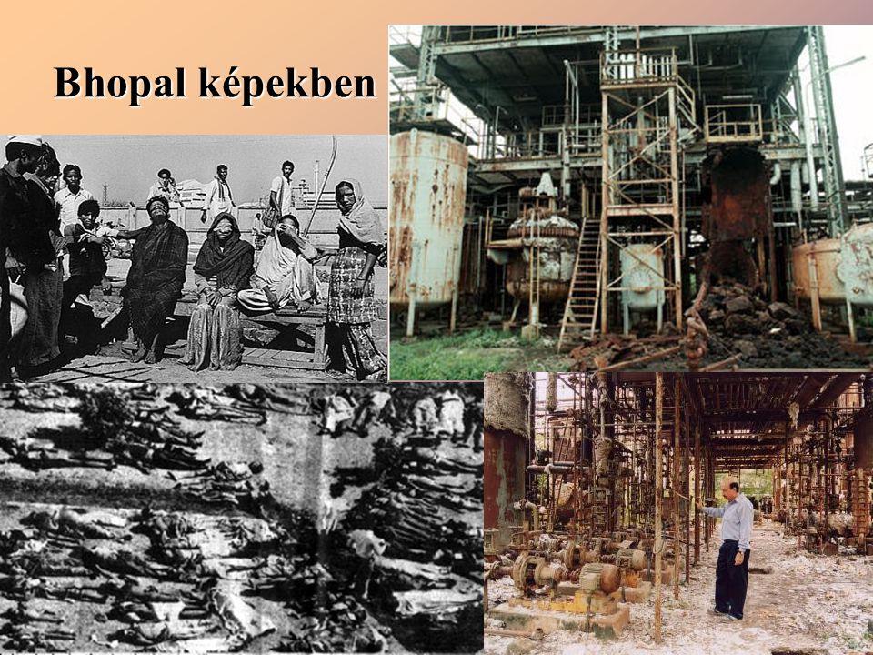 Bhopal képekben