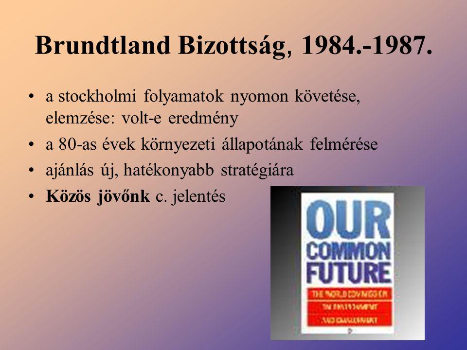 Brundtland Bizottság, 1984.-1987.