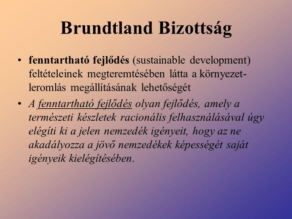 Brundtland Bizottság