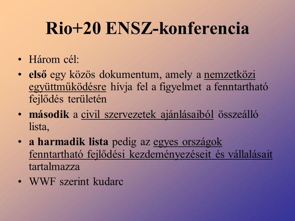 Rio+20 ENSZ-konferencia