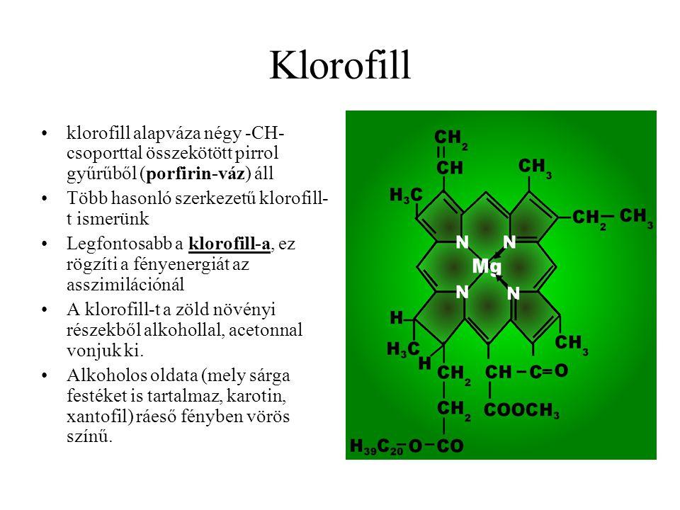 Klorofill klorofill alapváza négy -CH- csoporttal összekötött pirrol gyűrűből (porfirin-váz) áll. Több hasonló szerkezetű klorofill-t ismerünk.