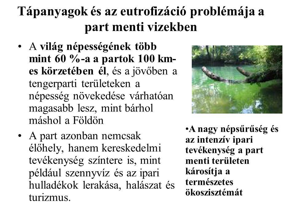 Tápanyagok és az eutrofizáció problémája a part menti vizekben