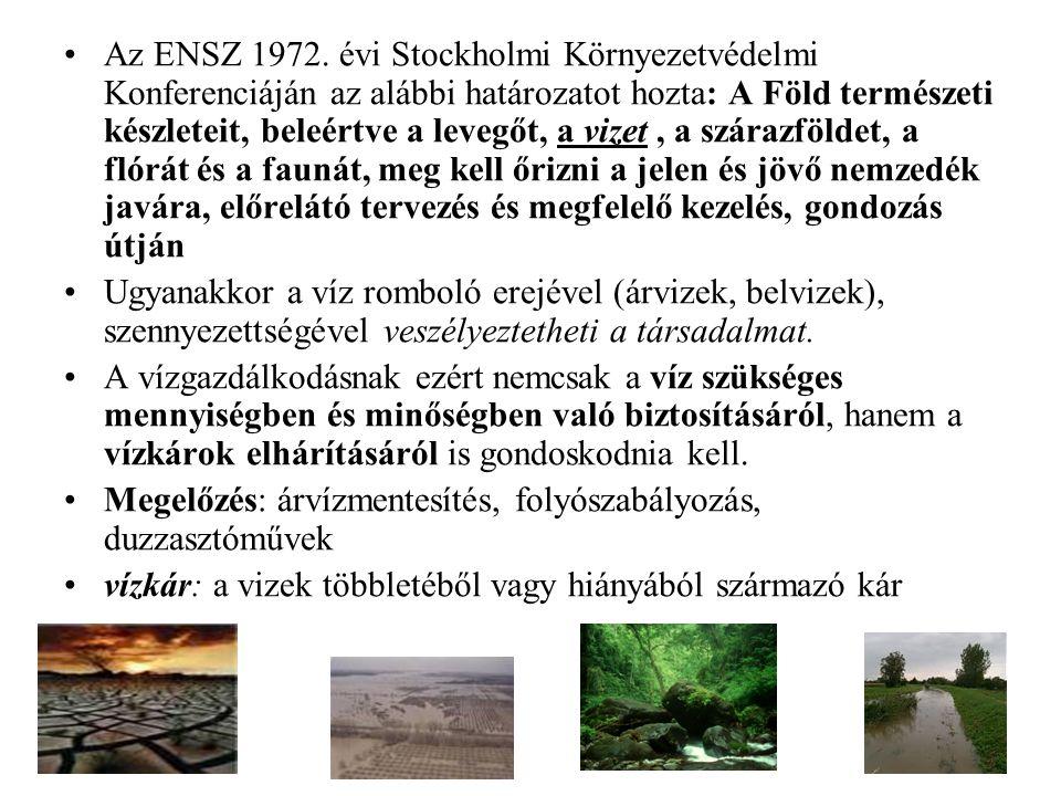 Az ENSZ 1972. évi Stockholmi Környezetvédelmi Konferenciáján az alábbi határozatot hozta: A Föld természeti készleteit, beleértve a levegőt, a vizet , a szárazföldet, a flórát és a faunát, meg kell őrizni a jelen és jövő nemzedék javára, előrelátó tervezés és megfelelő kezelés, gondozás útján