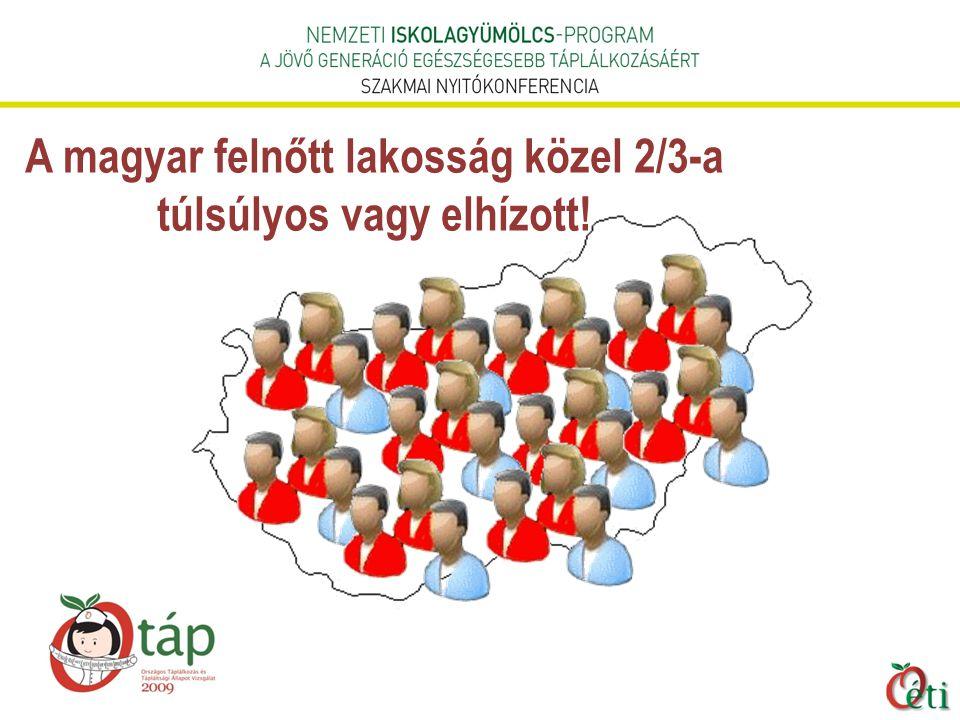 A magyar felnőtt lakosság közel 2/3-a túlsúlyos vagy elhízott!