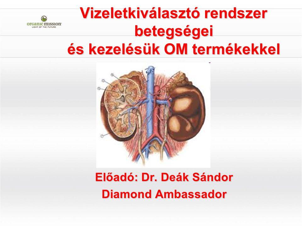 Vizeletkiválasztó rendszer betegségei és kezelésük OM termékekkel