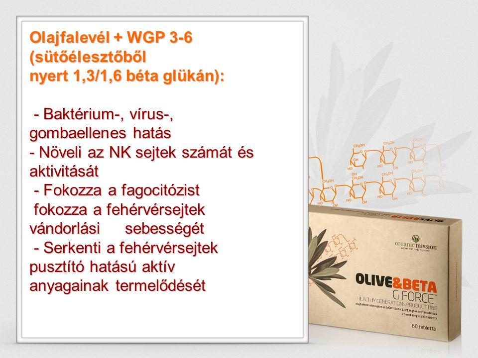 Olajfalevél + WGP 3-6 (sütőélesztőből