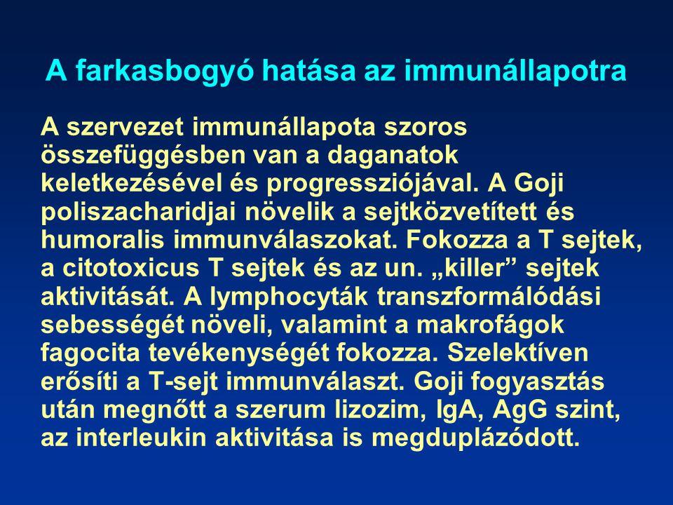 A farkasbogyó hatása az immunállapotra
