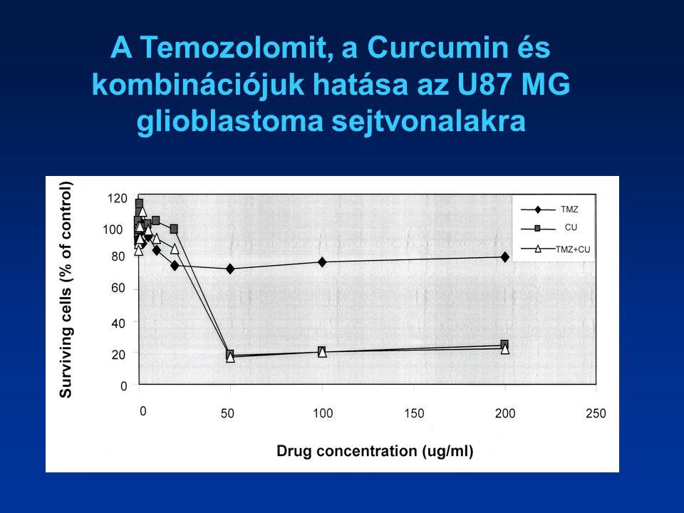 A Temozolomit, a Curcumin és kombinációjuk hatása az U87 MG glioblastoma sejtvonalakra
