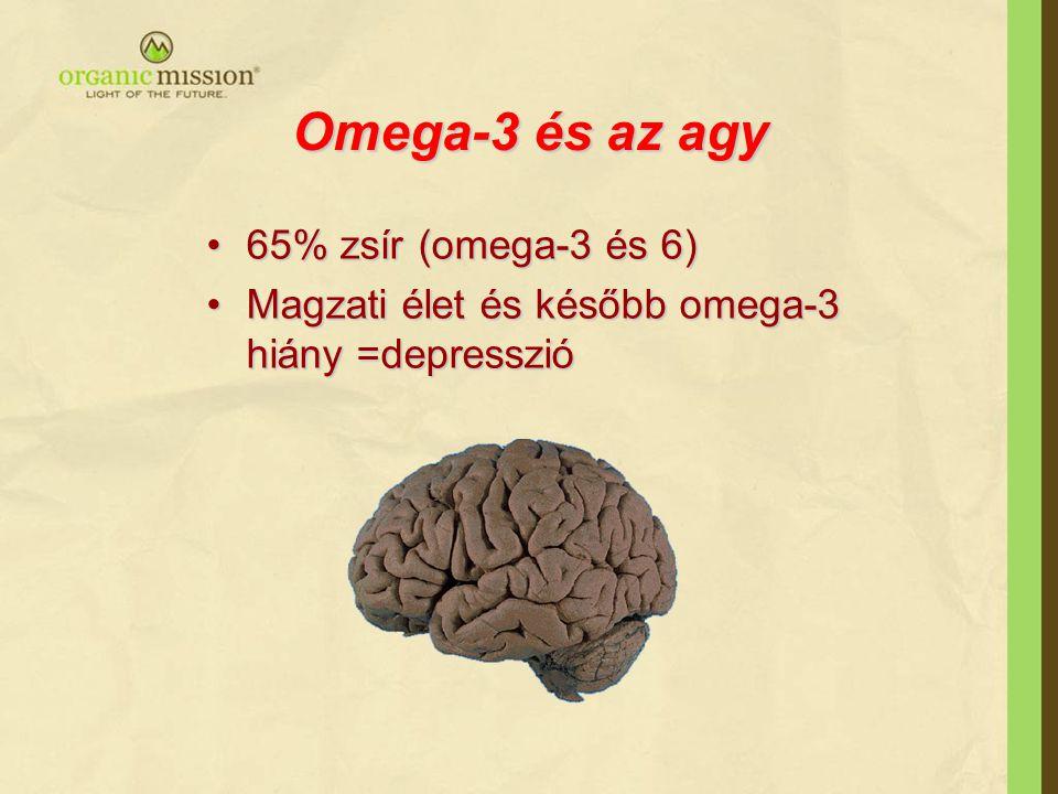 Omega-3 és az agy 65% zsír (omega-3 és 6)