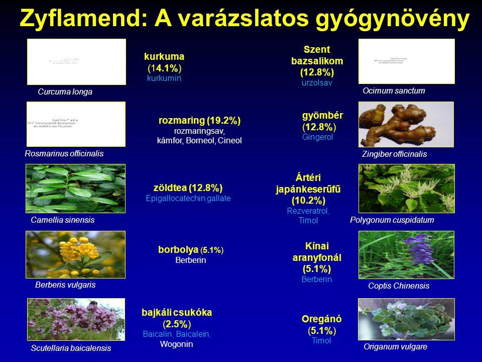 Zyflamend: A varázslatos gyógynövény