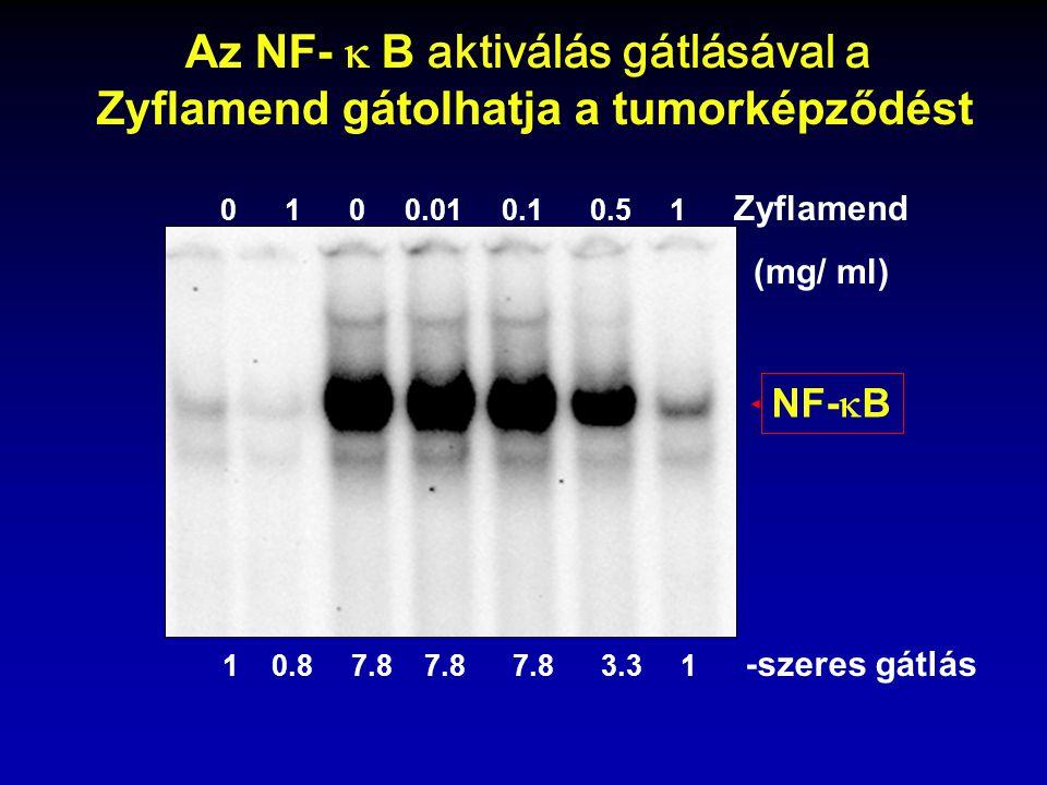 Az NF-  B aktiválás gátlásával a