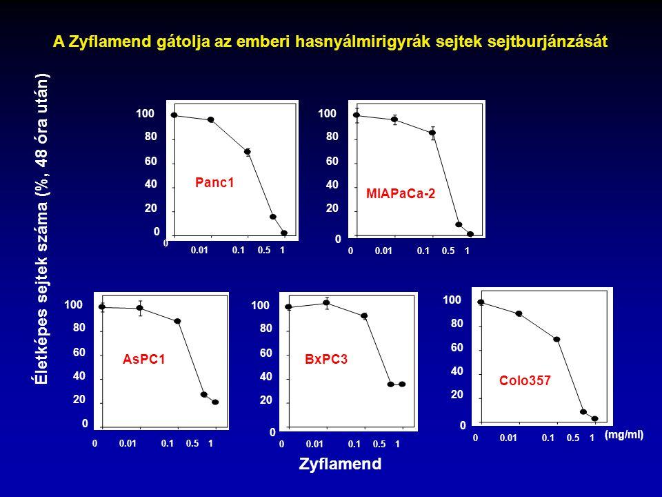 A Zyflamend gátolja az emberi hasnyálmirigyrák sejtek sejtburjánzását