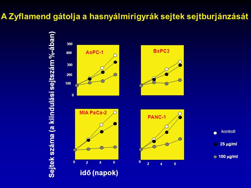 A Zyflamend gátolja a hasnyálmirigyrák sejtek sejtburjánzását