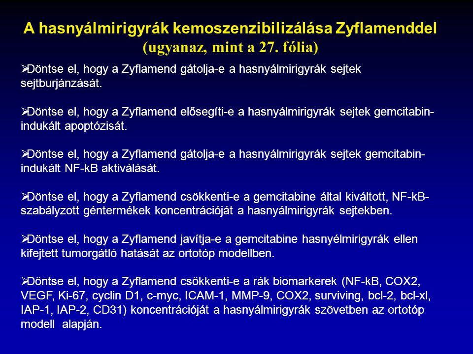A hasnyálmirigyrák kemoszenzibilizálása Zyflamenddel