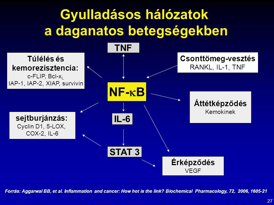 Gyulladásos hálózatok a daganatos betegségekben