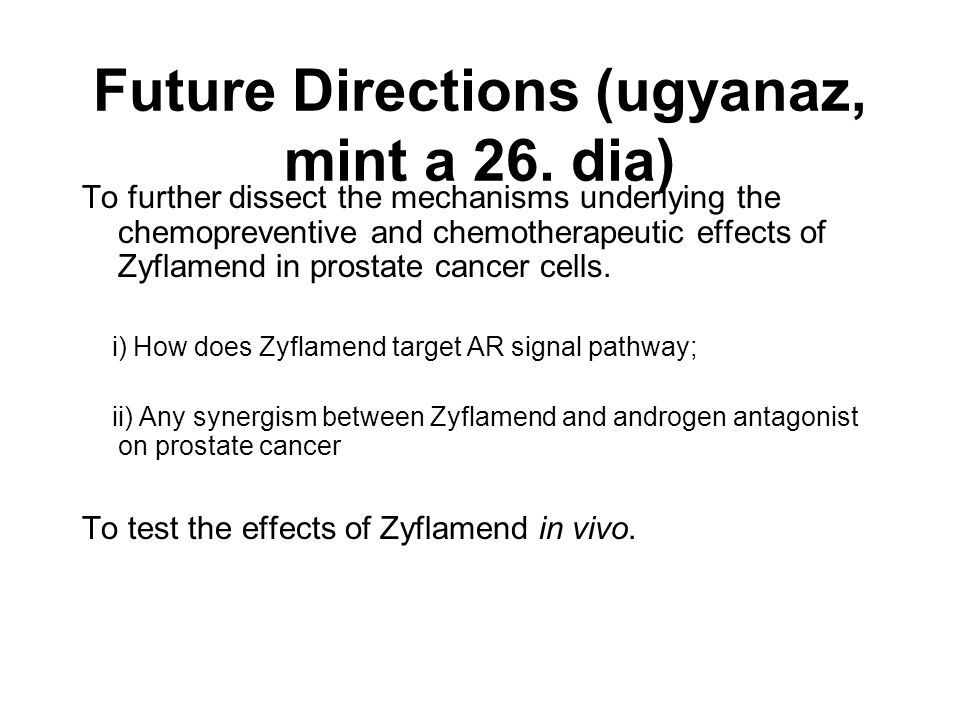 Future Directions (ugyanaz, mint a 26. dia)