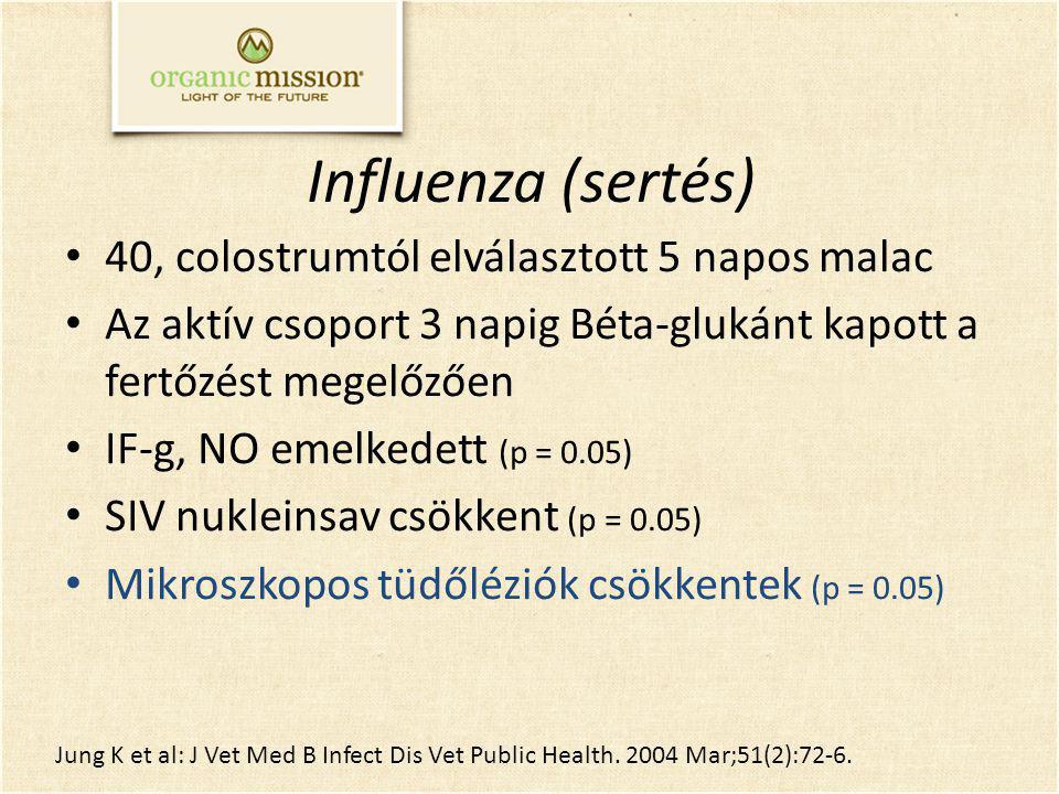 Influenza (sertés) 40, colostrumtól elválasztott 5 napos malac