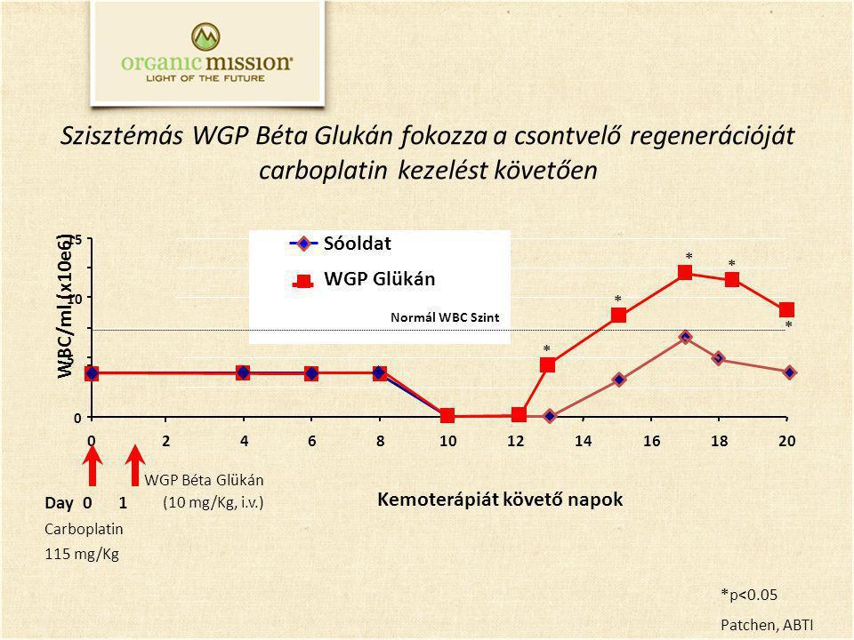 Szisztémás WGP Béta Glukán fokozza a csontvelő regenerációját carboplatin kezelést követően