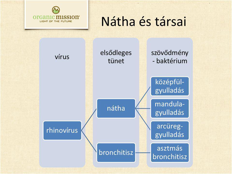 szövődmény - baktérium