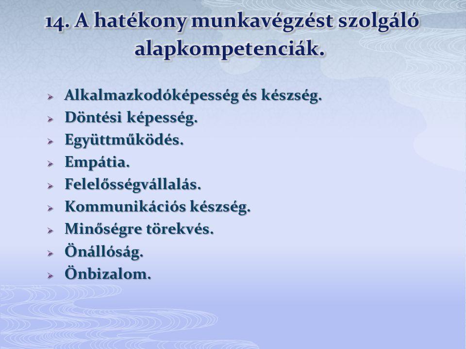 14. A hatékony munkavégzést szolgáló alapkompetenciák.