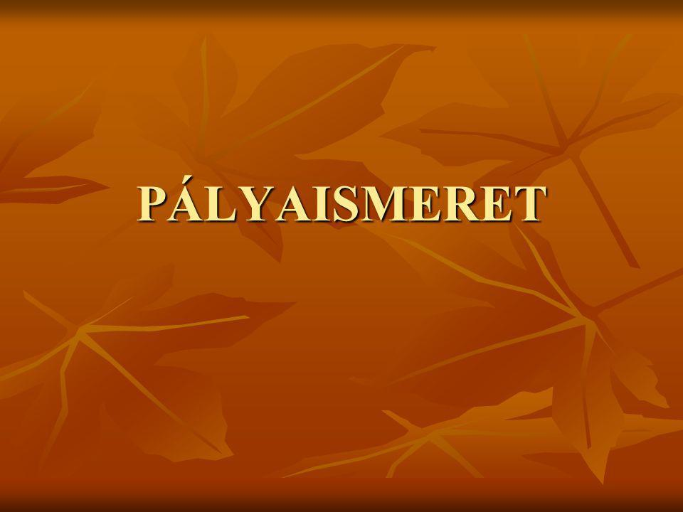 PÁLYAISMERET