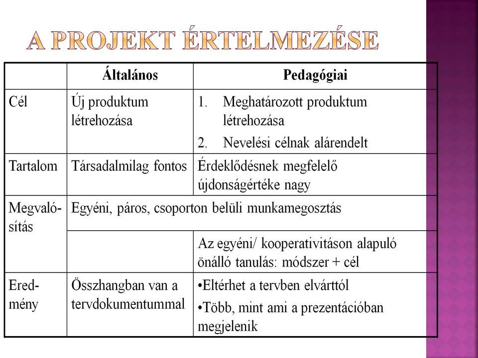 A projekt értelmezése