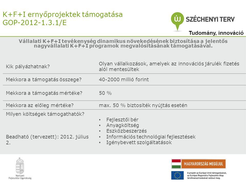 K+F+I ernyőprojektek támogatása GOP-2012-1.3.1/E