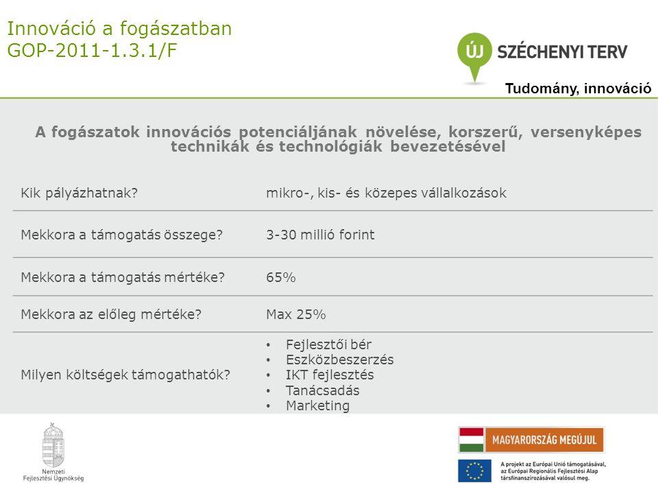 Innováció a fogászatban GOP-2011-1.3.1/F